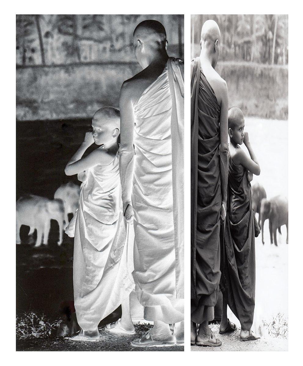 Tweeluik! monniken bij olifantenweeshuis