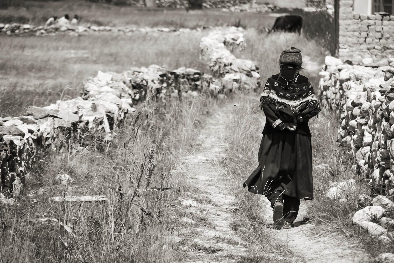 Ladakh vrouw in velden rondom Padum